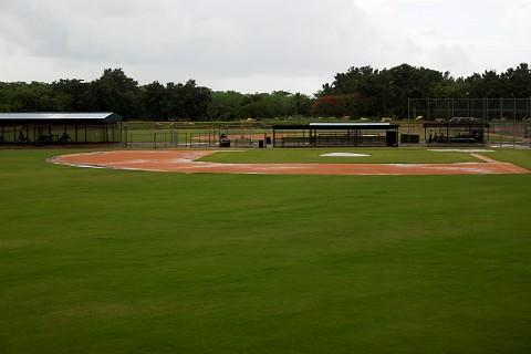 Rainy_Field_1
