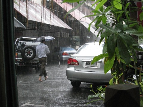 Suk11_Rain