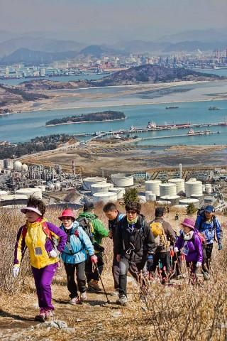 Yeosu Azalea Festival
