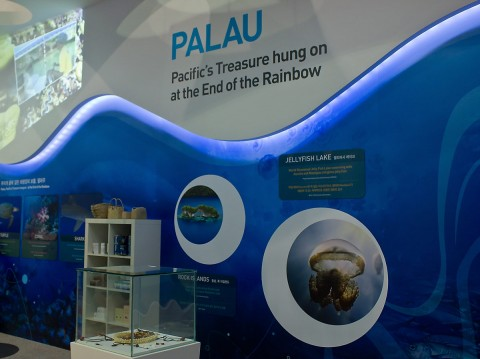 Palau Pavilion