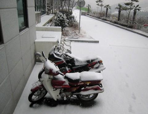 Motorbikes in snow
