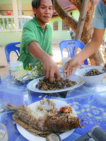 Pi Mai Lao