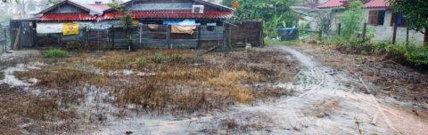 muddy front yard