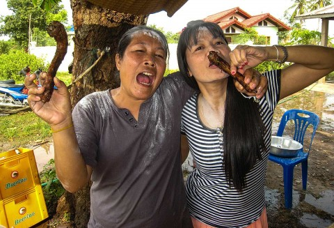 Suwon and friend